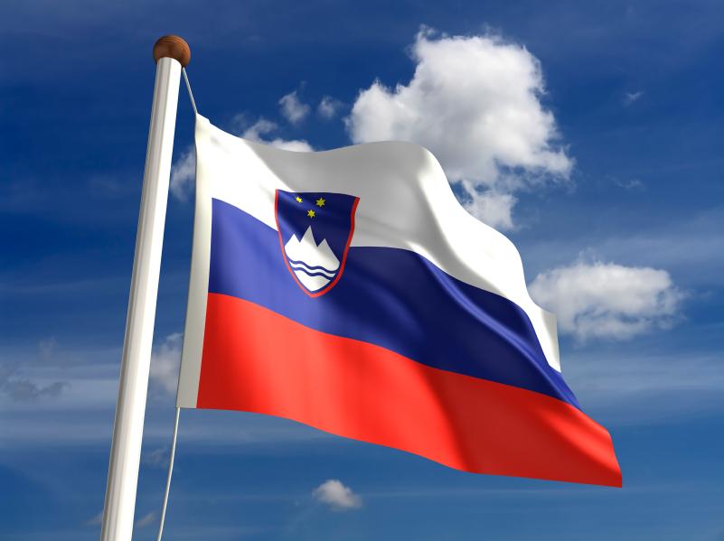 Universities in Slovenia Combine Heritage with Value